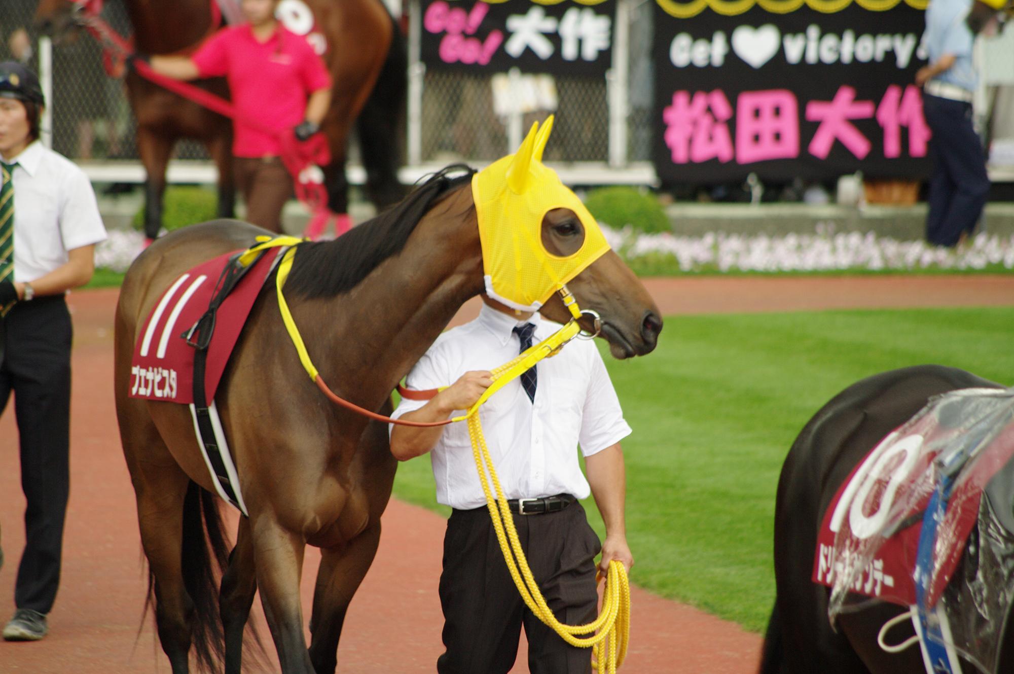 中山12R【押し切り勝ち期待 軸馬のイチオシ】10~12Rの予想(9/21)