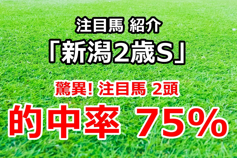 新潟2歳ステークス2020 予想 注目馬の紹介【驚異! 年間的中率 75%】