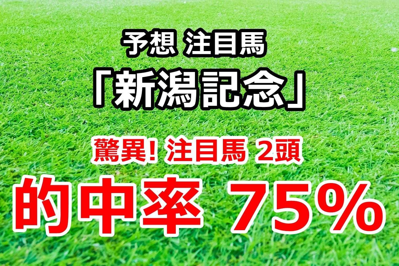 新潟記念2020 先行公開【勝負できる5頭】