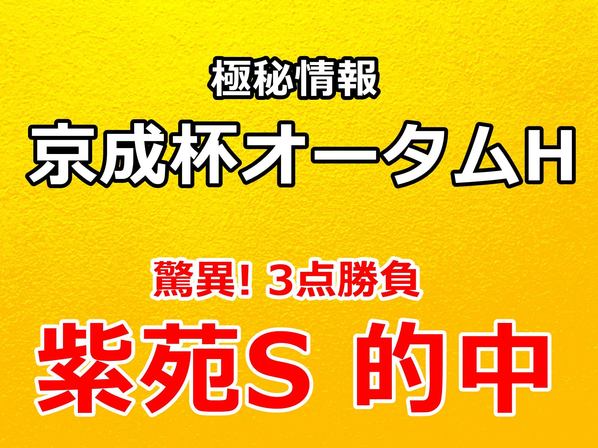 京成杯オータムハンデ2020 予想 勝負できる3頭【驚異! 年間回収率 192%】